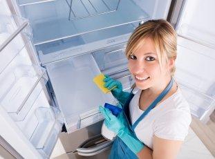 Как и чем мыть холодильник внутри